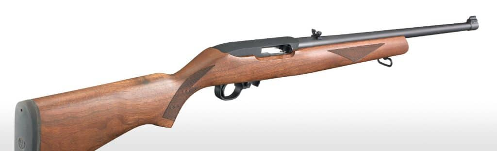 the best ruger 10 22 models rated and reviewed